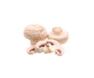 Brown champignon mushrooms. Stock Images