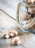 Brown champignon mushrooms on the wooden background. Close up Royalty Free Stock Image