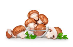 Brown champignons  mushrooms in a glass bowl Royalty Free Stock Photography
