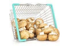 Fresh raw brown champignon isolated on white stock image