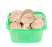 Brown champignons in plastic box. Stock Photos