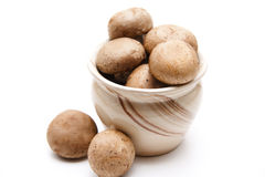 Brown champignons in the pot Stock Photography