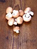 Brown champignons on wood background Stock Image