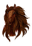 Brown chestnut running horse portrait Royalty Free Stock Photos