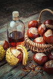 Brown chestnuts in basket and bottle of  tincture Royalty Free Stock Photo