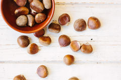 Brown chestnuts over wooden surface. Brown chestnuts in bowl over white wooden surface Royalty Free Stock Photos