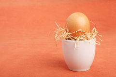 Brown chicken egg arranged in a cup with dried straw Royalty Free Stock Photos