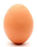 Brown chicken egg isolated on a white background Royalty Free Stock Images