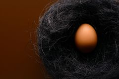 Brown chicken egg in the nest of sisal. Easter background. Brown chicken egg in the nest of sisal royalty free stock photo