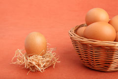 Brown chicken egg in strawnest and eggs in the basket Stock Photos