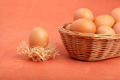 Brown chicken egg in strawnest and eggs in the basket Royalty Free Stock Images
