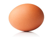 Brown chicken egg on white background. Brown chicken egg on a white background royalty free stock image