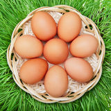 Brown chicken egg in a wicker basket Royalty Free Stock Photos
