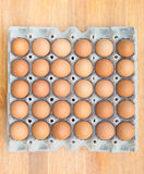 Brown chicken egg Stock Image