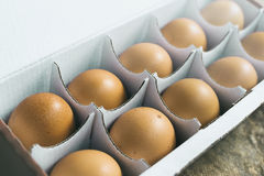 Brown chicken eggs in box Royalty Free Stock Photo
