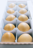 Brown chicken eggs in box Stock Photos