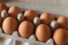 Brown chicken eggs in a gray cardboard container. Close-up Royalty Free Stock Images