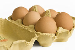 Brown Chicken Eggs In Box Royalty Free Stock Photography