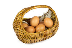 Brown Chicken Eggs and Pen in a Wicker Basket Isolated on White Stock Image