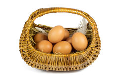 Brown Chicken Eggs and Pen in a Wicker Basket Isolated on White Royalty Free Stock Photos
