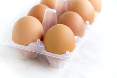 Brown chicken eggs Royalty Free Stock Photos