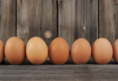 Brown Chicken Eggs Row. A row of brown chicken eggs lined up on rustic wood surface with wood board background stock images