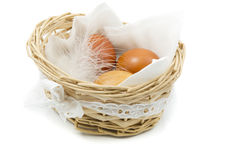 Brown chicken eggs with white feather in a basket on a white Royalty Free Stock Photography