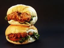 Brown Chicken Meat Sandwich Royalty Free Stock Photos