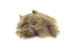 Brown Children's lock of hair Royalty Free Stock Images