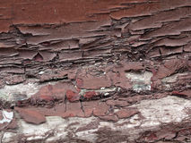 Brown chipping paint on wood Stock Photography
