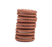 Brown chocolate biscuits Royalty Free Stock Images