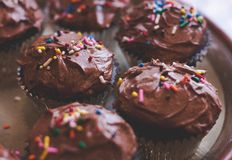 Brown Chocolate Cupcake Royalty Free Stock Photography