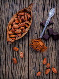 Brown chocolate powder in spoon , Roasted cocoa beans in the dry Royalty Free Stock Photography