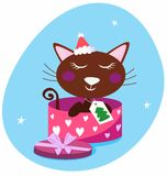 Brown christmas cat in pink gift box Royalty Free Stock Image
