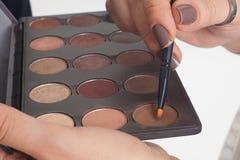 Brown cienie z muśnięciem Obrazy Stock