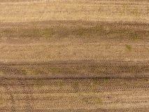 Brown ścierniskowego pola widok z lotu ptaka Zdjęcia Stock