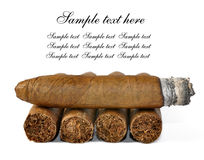 Brown cigar burned Royalty Free Stock Photography