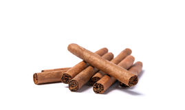Brown cigar burned on white background Royalty Free Stock Photos