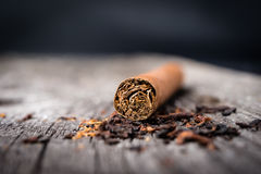 Brown cigar. Selective focus. Stock Photo