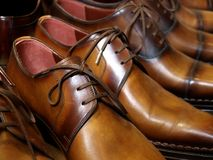 Brown classic men shoes Stock Photography