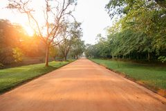 The brown clay road among the jungle, the green trees along the edges of the ro. Sri Lanka, the rock of Sigiriya lion`s mountain, the brown clay road among the Royalty Free Stock Photo