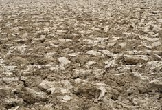 Brown clods of arable field. Big brown clods of arable field Stock Images