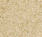 Brown coarse rice Royalty Free Stock Photography