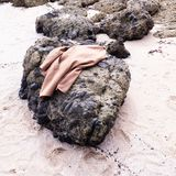 Brown Coat on Black Stone Stock Photo
