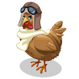 Brown cock Aviator in retro pilot costume. Vector. Bird in cartoon style. Illustration on white background for your design needs Royalty Free Stock Photography