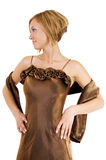 Brown cocktail dress Stock Image