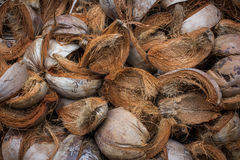 Brown Coconut Husks Stock Images