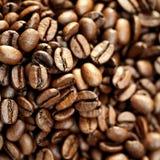 Brown Coffee Beans Stock Photos