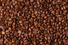Brown coffee beans Stock Photos