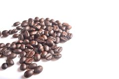 Brown coffee beans. Brown coffee beans on white background Stock Photos